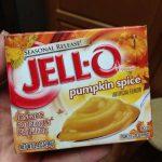 Pumpkin Cheesecake Pudding