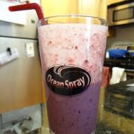 Ocean Spray Diet Cranberry Smoothie