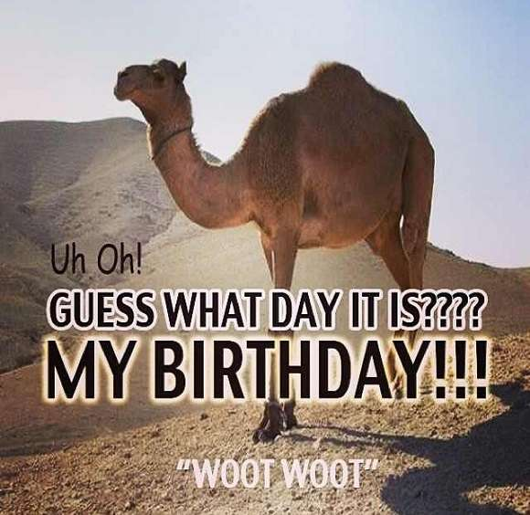 Guess What Day It Is Birthday
