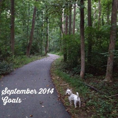 September 2014 Goals