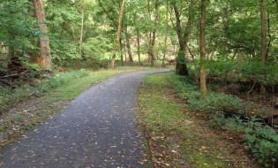Rock Creek Park Trail Workout Walk