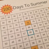 100 Days To Summer