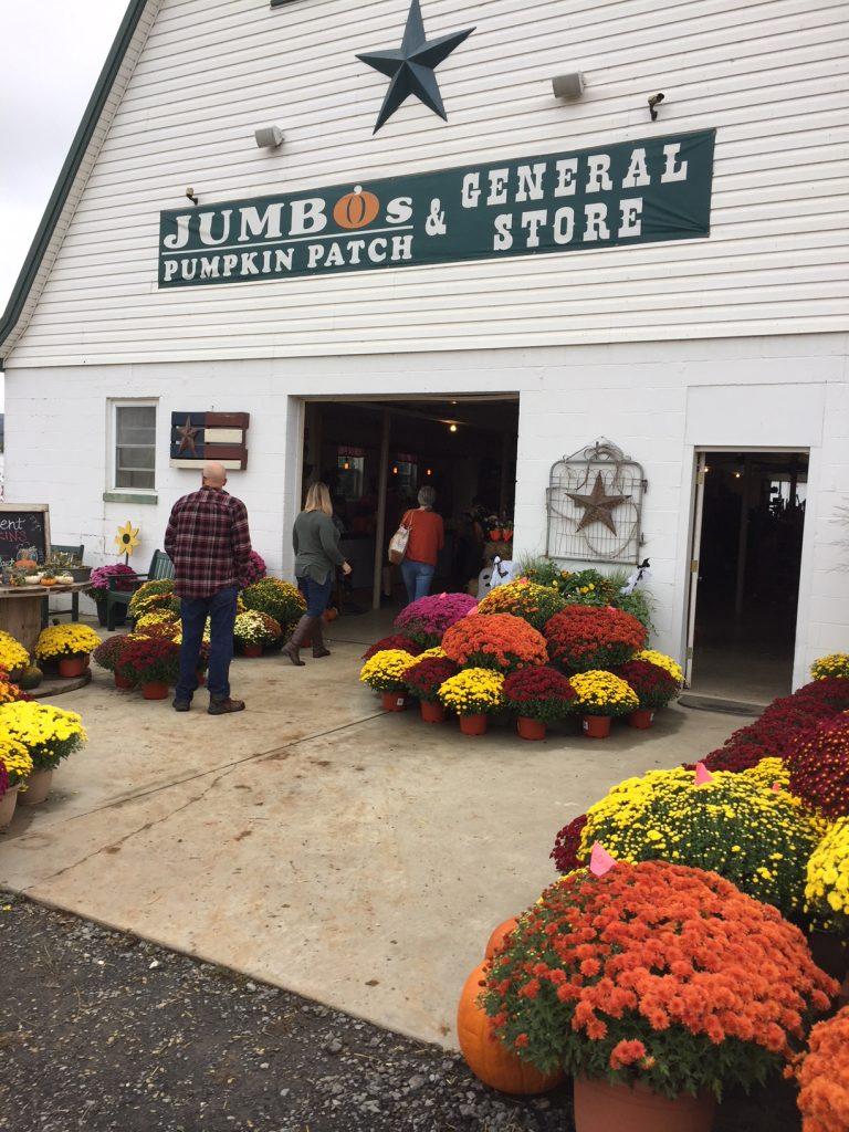 Jumbo's Pumpkin Farm