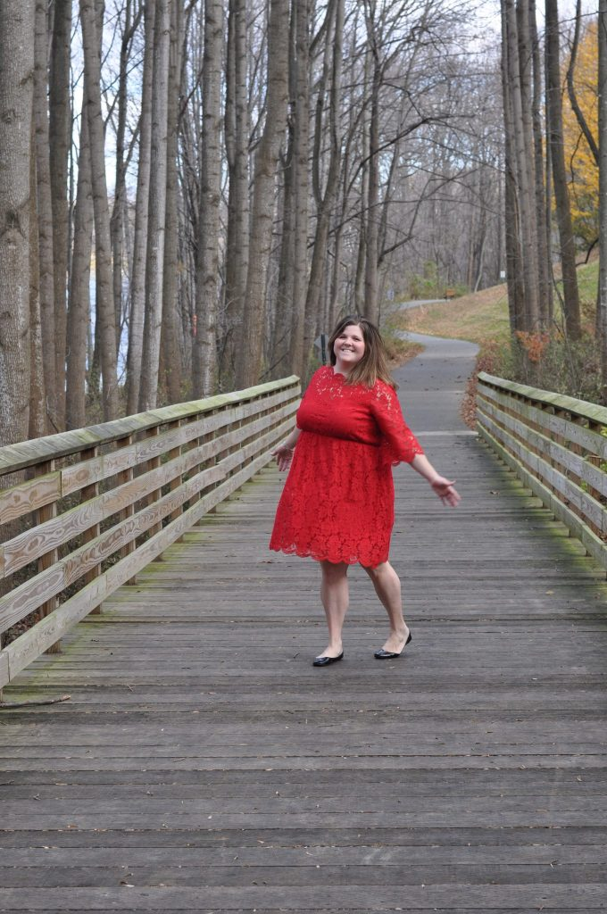 Lane Bryant Holiday Dress Plus Size