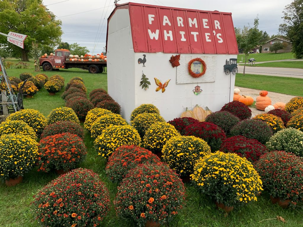 Farmer Whites Michigan