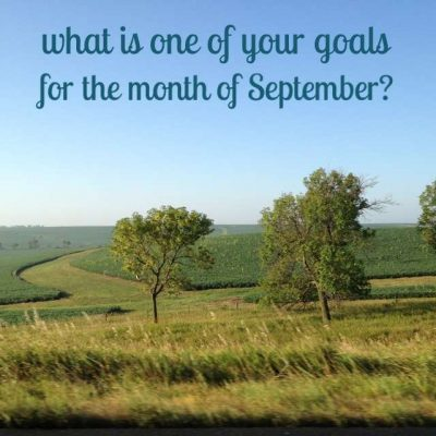 September 2015 Goals