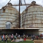 Hill Country + Magnolia Market