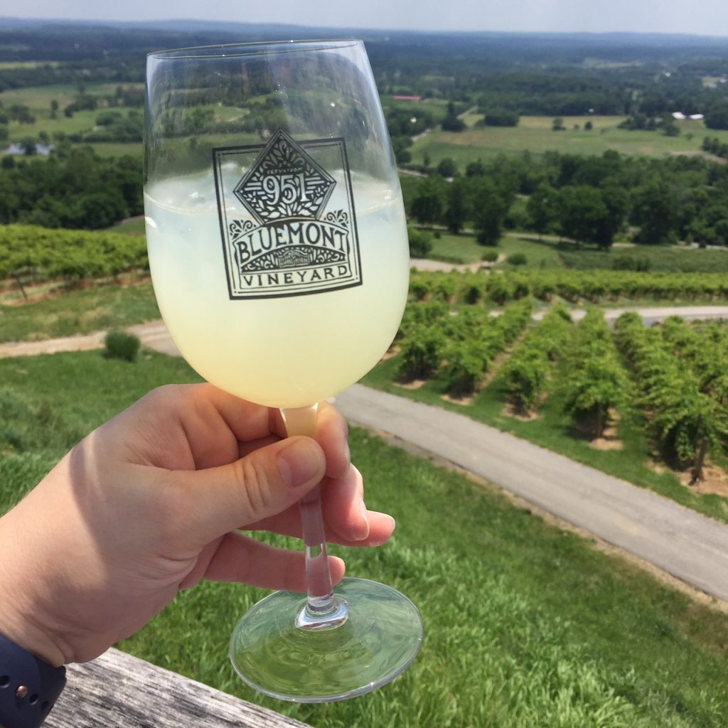 Bluemont Winery Virginia