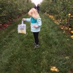 Apple Picking at Baugher's Farm