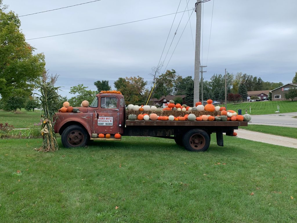 Farmer Whites Michigan